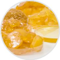 Ginger Industry